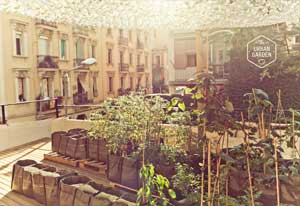 brummell-events-5-urban-garden